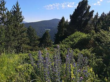 beautiful nature in Andorra