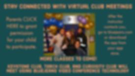 Virtual Meetings.png