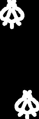 vector_8.png