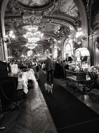 L'intrus 01  Paris 2013