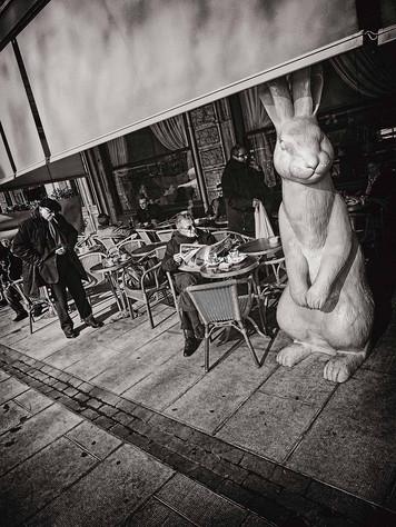 Vrais fumeurs et faux lapin  Genève 2012