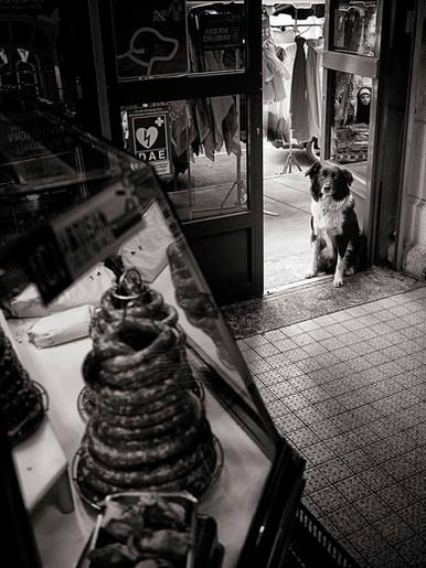 L'intrus 02  Narbonne 2012