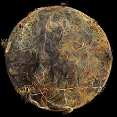 Roots  Villette 2012