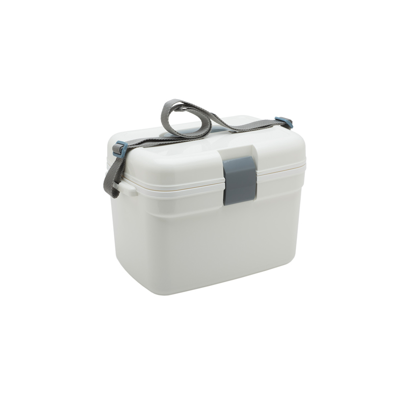 Sturdy Cooler Small