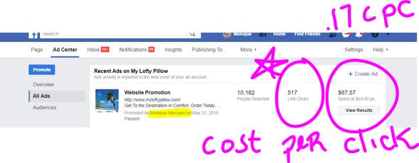 17 cost per click and 517 clicks.PNG