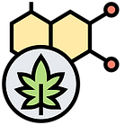 Why the cannabis industry?