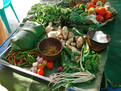 The Chiang Mai Food and Agrobiodiversity Festival (Thailand)