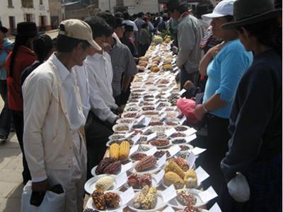 Huamanga Food Festival (Peru)