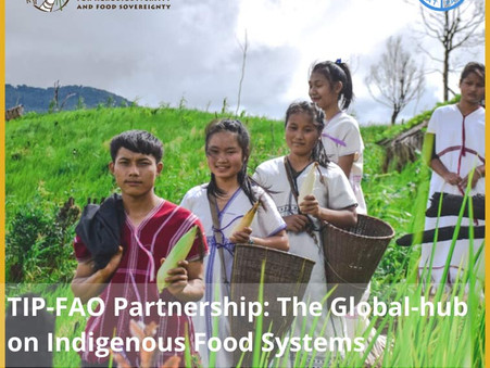 TIP-FAO Partnership: The Global-hub on Indigenous Food Systems