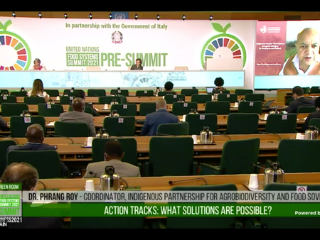 Game-changing dialogue at the UN Food Systems Pre Summit