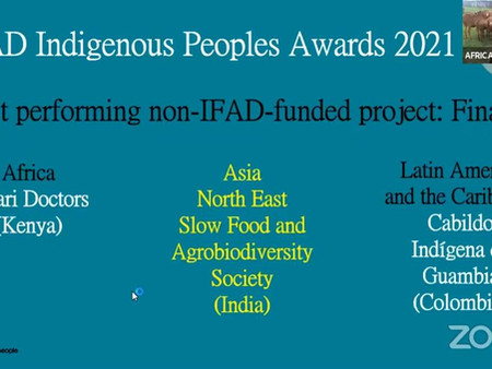 """PROJECT """"No one shall be left behind"""" WINS """"Best performing project"""" Award  2021 from United Nation'"""