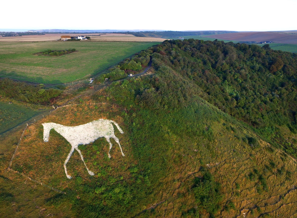 chalk horse (2).jpg