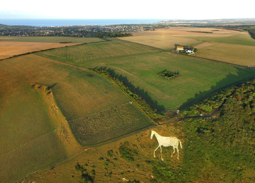 chalk horse (1).jpg