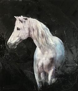 caballo bianco, white horse