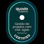 gestao_projetos_metodos_ageis.png