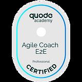 agile_coach_e2e.png