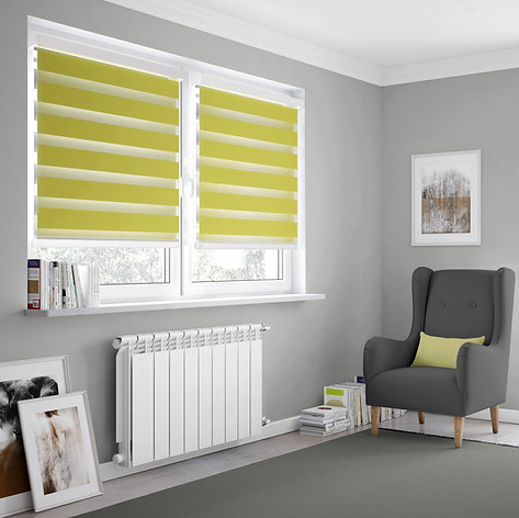 Light green day and night blinds