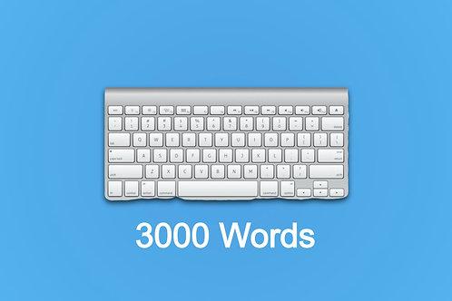 3000 מילים