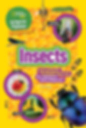 insects cover.jpg
