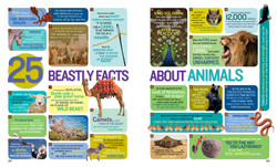 Bible Facts spread 2
