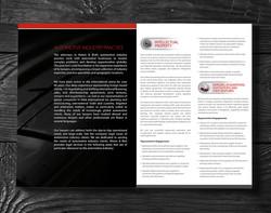 Automotive Practice Brochure