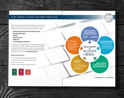 Privacy Data Security Brochure