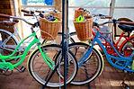 Bikes to rent 1.jpg