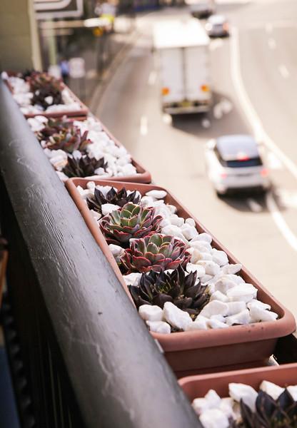 rooftop 16.jpg