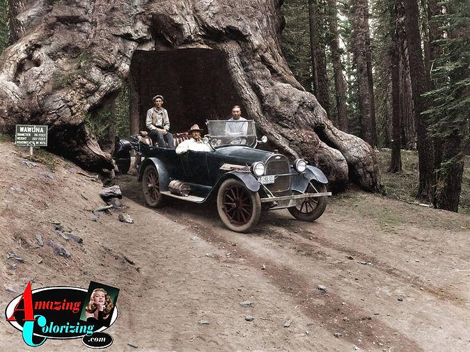 Amazing_Colorizing_Yosemite_California_R