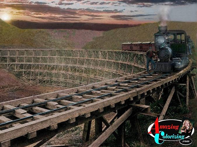 Amazing_Colorizing_Hawaiian_Railroad_CO_