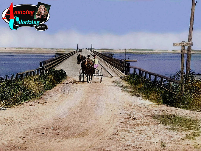 Amazing_Colorizing_Powder_Point_Bridge_D