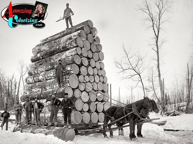 Amazing_Colorizing_Logging_Michigan_BW_1