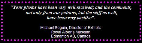 Royal Alberta Museum - Promo 3.PNG