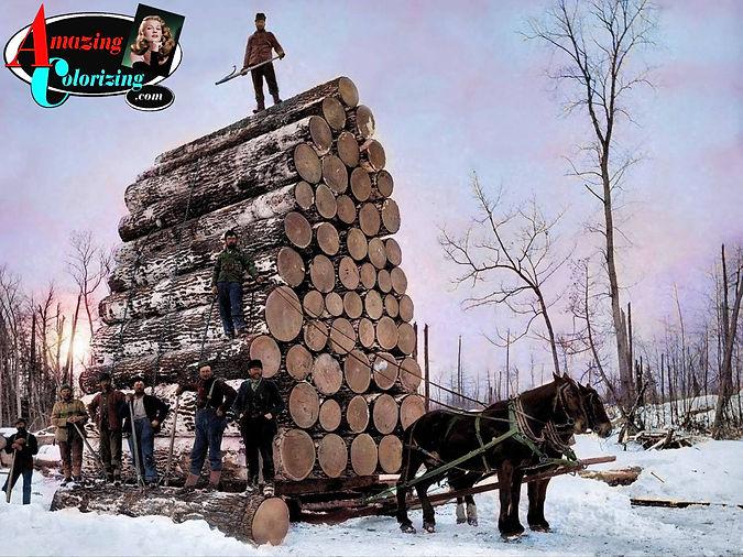 Amazing_Colorizing_Logging_Michigan_CO_1