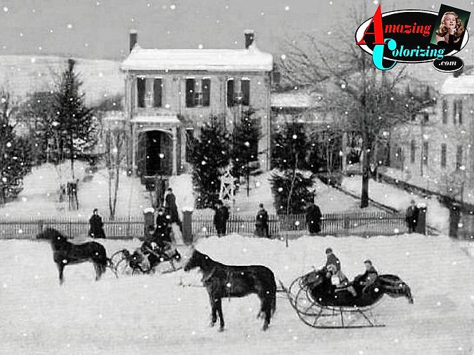 Amazing_Colorizing_Snow_Scene_One_Horse_