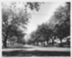 streets_Claiborne_N_03.TIF