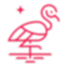 cheeky flamingo.png