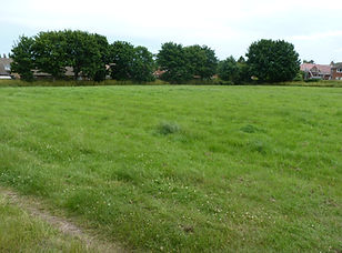 Land to let, Malton, North Yorkshire