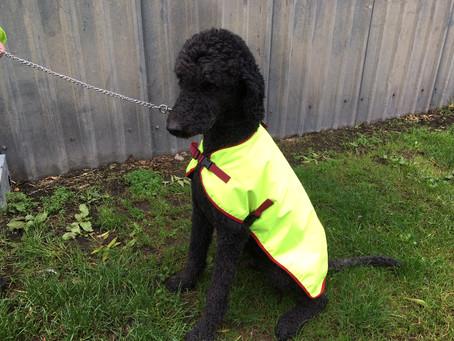 More raincoats!