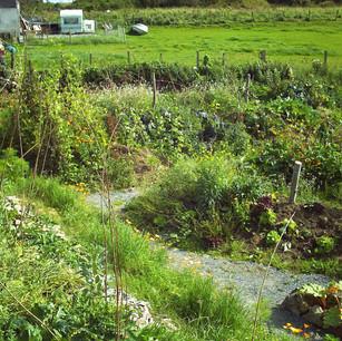 PK-Garten in Irland.jpg