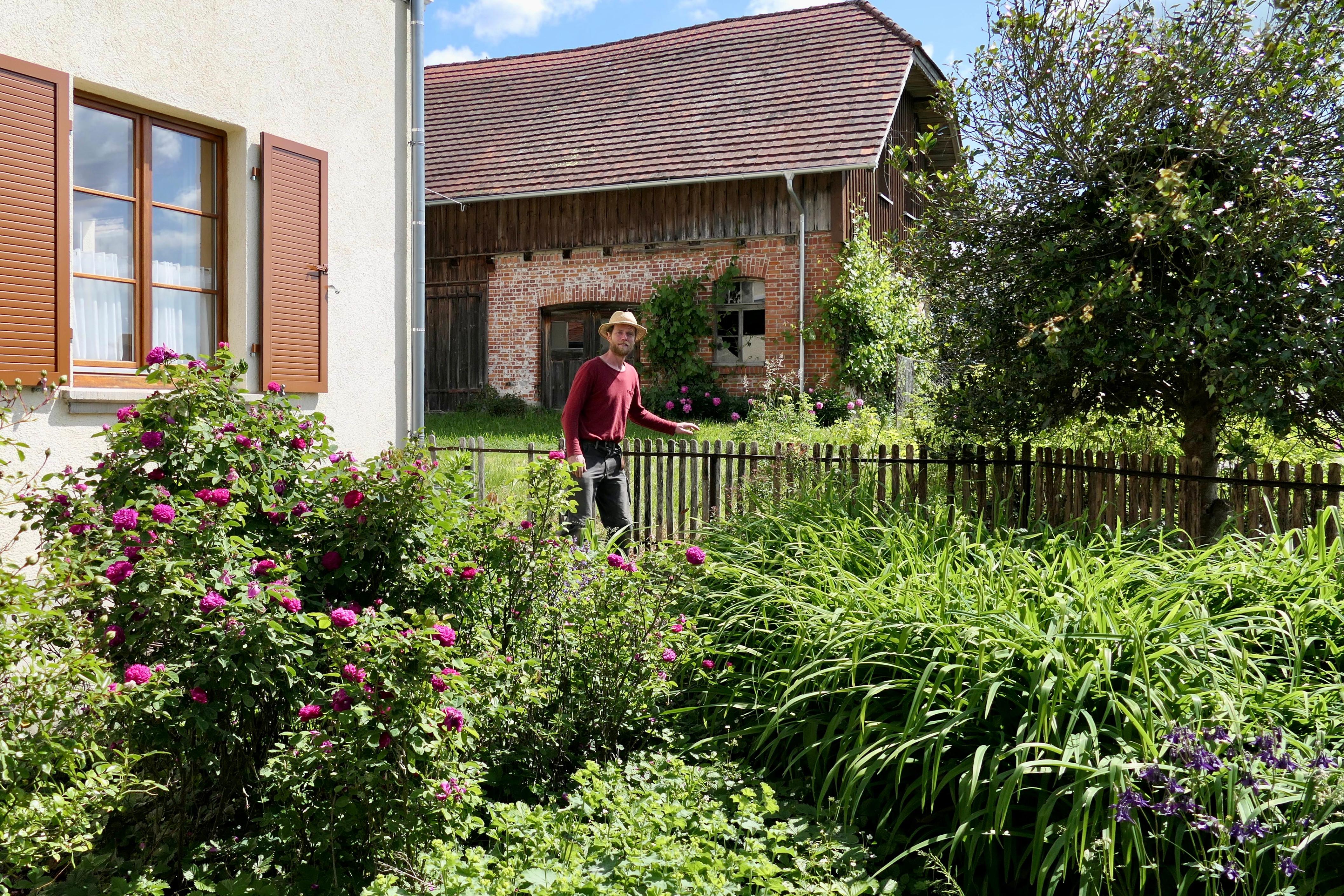 Naturgartenpflege