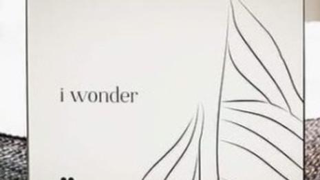 I wonderdays
