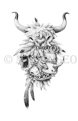 Teef, Feathers & Skulls