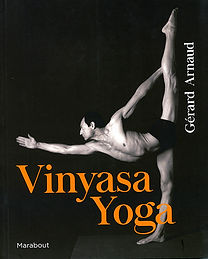 Vinyasa Yoga.jpg