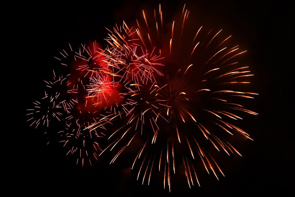 fireworks-1047398_1280.jpg