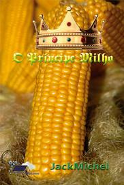 O_Príncipe_Milho_-_Web_-_SITE_LL.jpg