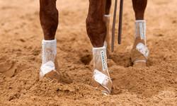 Orthopedic Support Boot