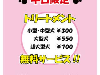 10月キャンペーン トリートメント無料サービス(平日限定)