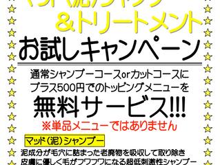 9月限定キャンペーン(平日のみ)のお知らせ