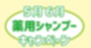 スクリーンショット 2020-04-13 15.44.37.png